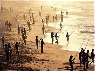 Many_fishing